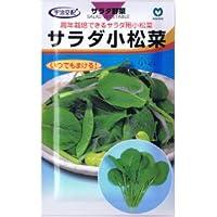 【種子】コマツナ サラダ小松菜 8ml