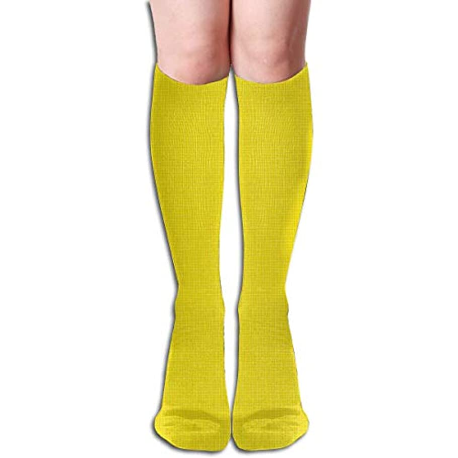 かもめタフ楽しませるqrriyスポンジボブチューブストッキングレディース冬暖かい膝ハイソックスブーツ靴下