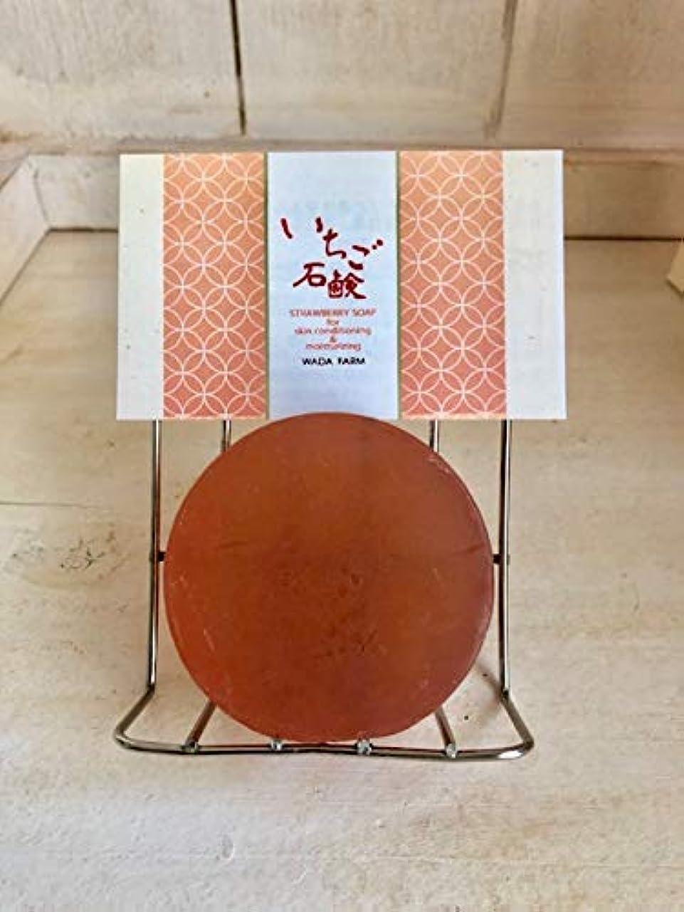 年金受給者服を片付ける発見和田農園のいちご石鹸 40g