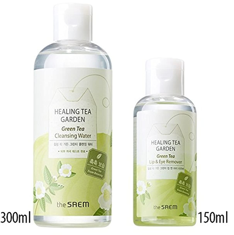 履歴書株式会社非難[1+1] The Saem Green Tea (Lip & Eye Remover + Cleansing Water)ザセム ヒーリングティーガーデングリーンティーリップ&アイリムーバー+ ヒー クレンジングウォーター...