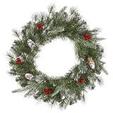 Best Vickermanクリスマスツリー - Vickerman 27680–30インチFrosted松ベリー70クリアライトクリスマスリース( j120231) Review