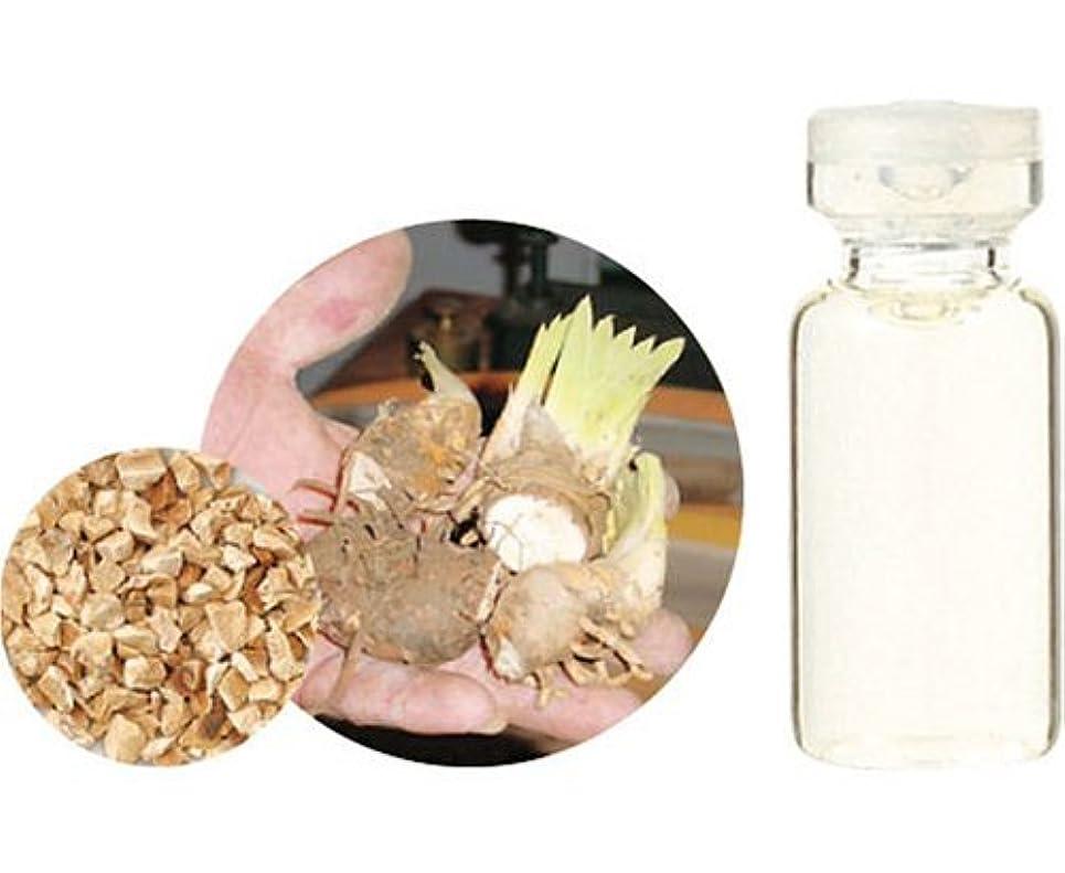 主張する重要な役割を果たす、中心的な手段となるその結果生活の木 エッセンシャルオイル レアバリュー イリス 5%希釈 1ml