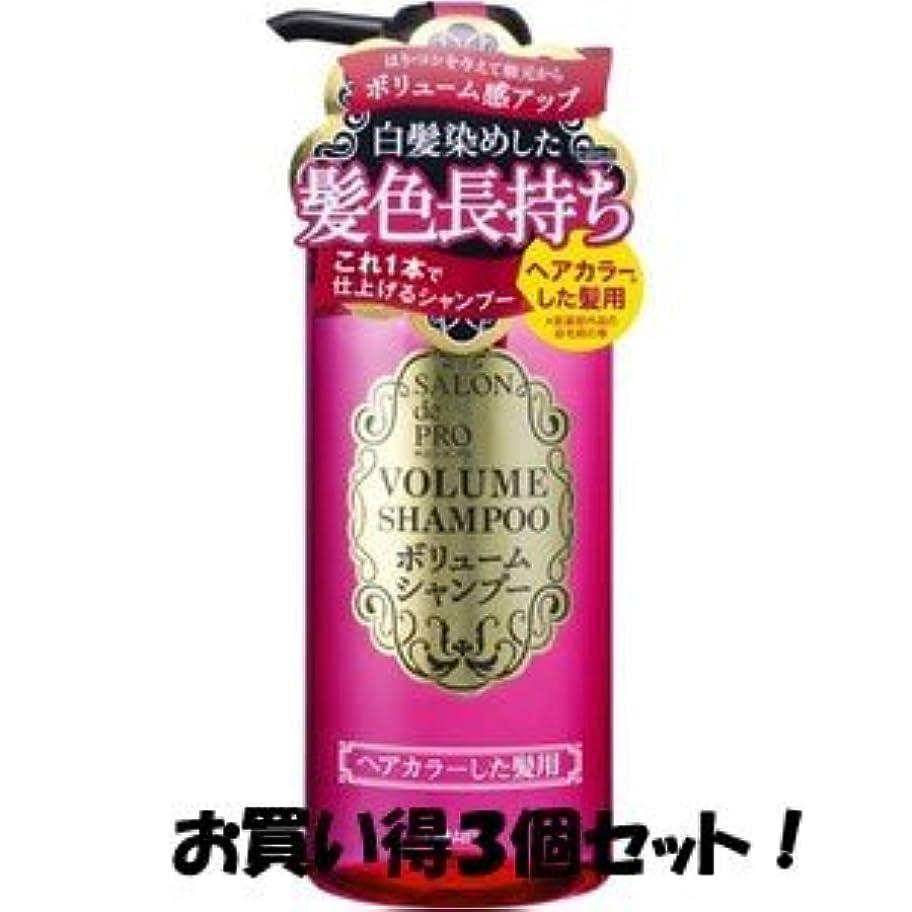 放牧するグローバル肌(ダリヤ)サロンドプロ ボリュームシャンプーヘアカラーした髪用 380ml(お買い得3個セット)