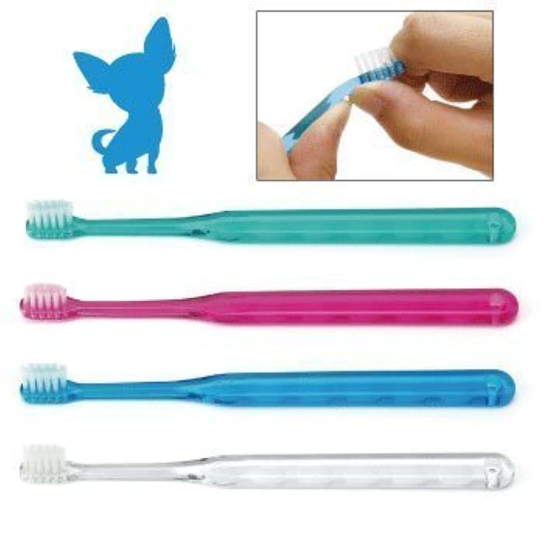 マナーはさみ申し立てられた犬用歯ブラシ / Ci シュワワ / 4色アソート/12本セット
