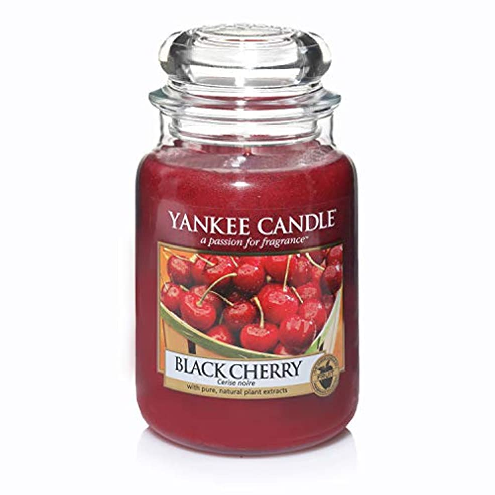 創造瞑想押すYankee Candle Large Jar Candle, Black Cherry by Yankee Candle