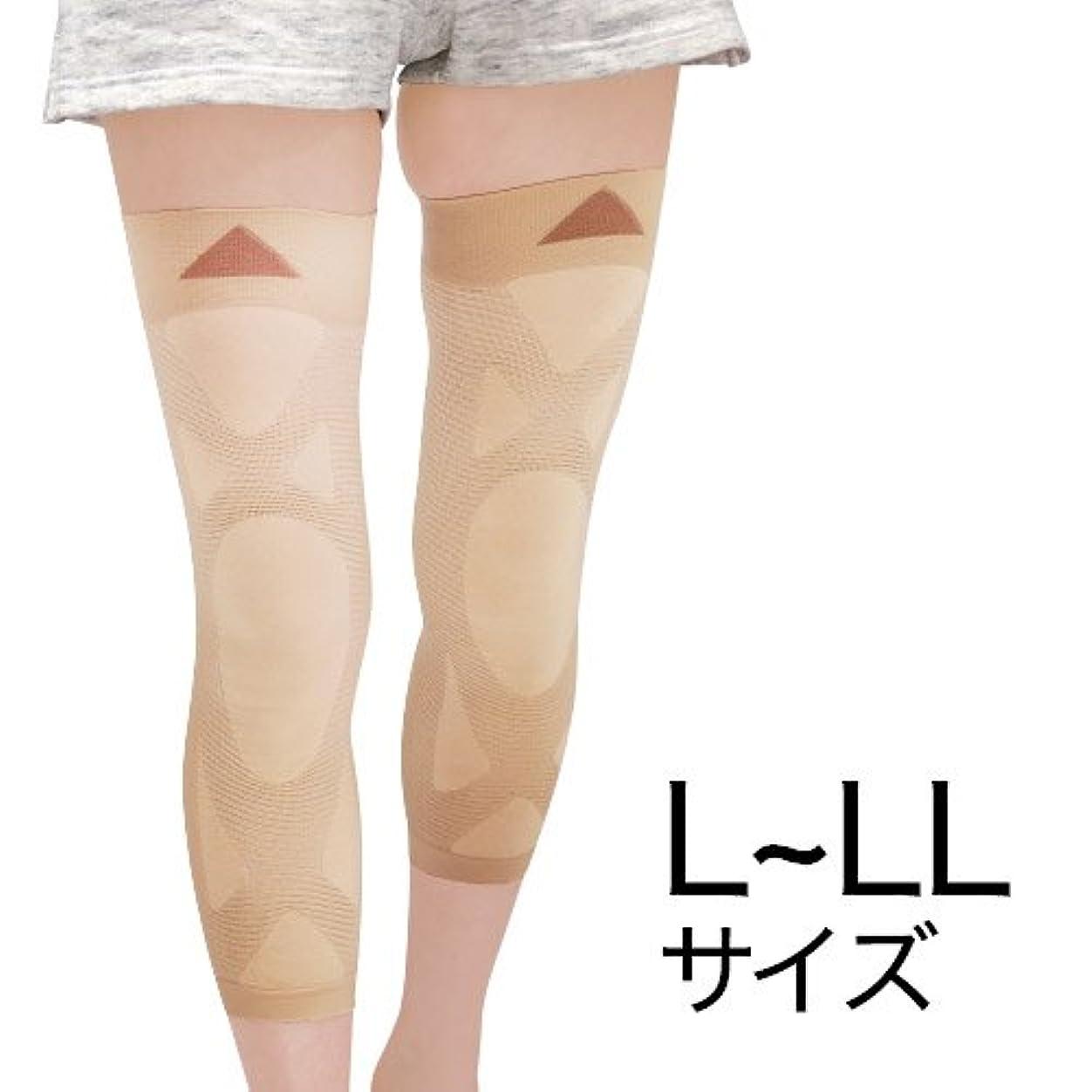 キャンドル型飼料ナチュラルガーデン 膝楽サポーター L~LL(左右共通2枚組)