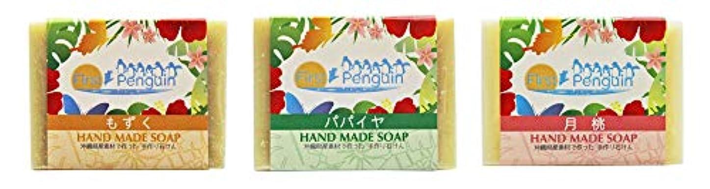 バイアススタンド弱い手作り洗顔石けん (もずく、パパイヤ、月桃)