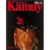 炎のカムイ―火の鳥・アカショウビン2