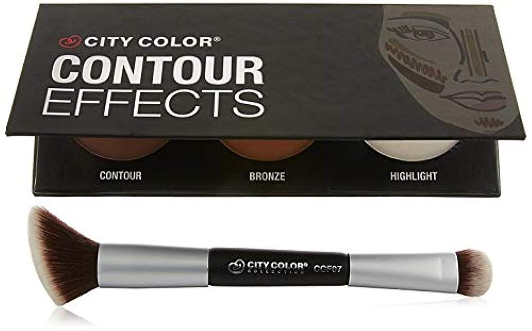 情熱さわやかインドCITY COLOR Contour Dual-Ended Brush (並行輸入品)