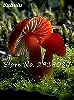 種子パッケージ: 9:ハッピーファーム9のために100個のカラフルな種子Succlent工場食用Ornamentaグリーン健康野菜の種