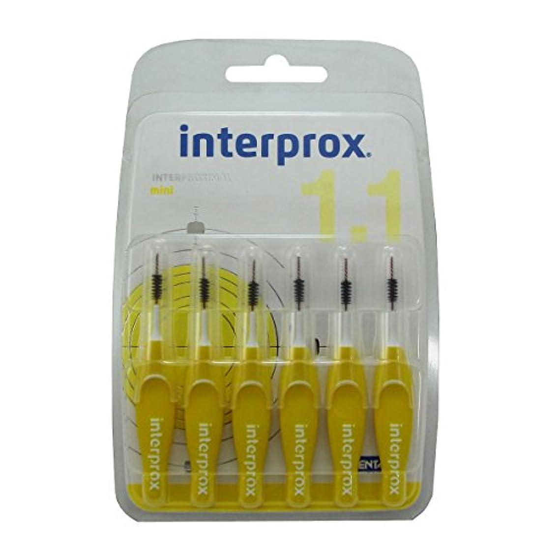 誠実つかいますアルカトラズ島Interprox Mini Flexible Brush 1.1 X6 [並行輸入品]