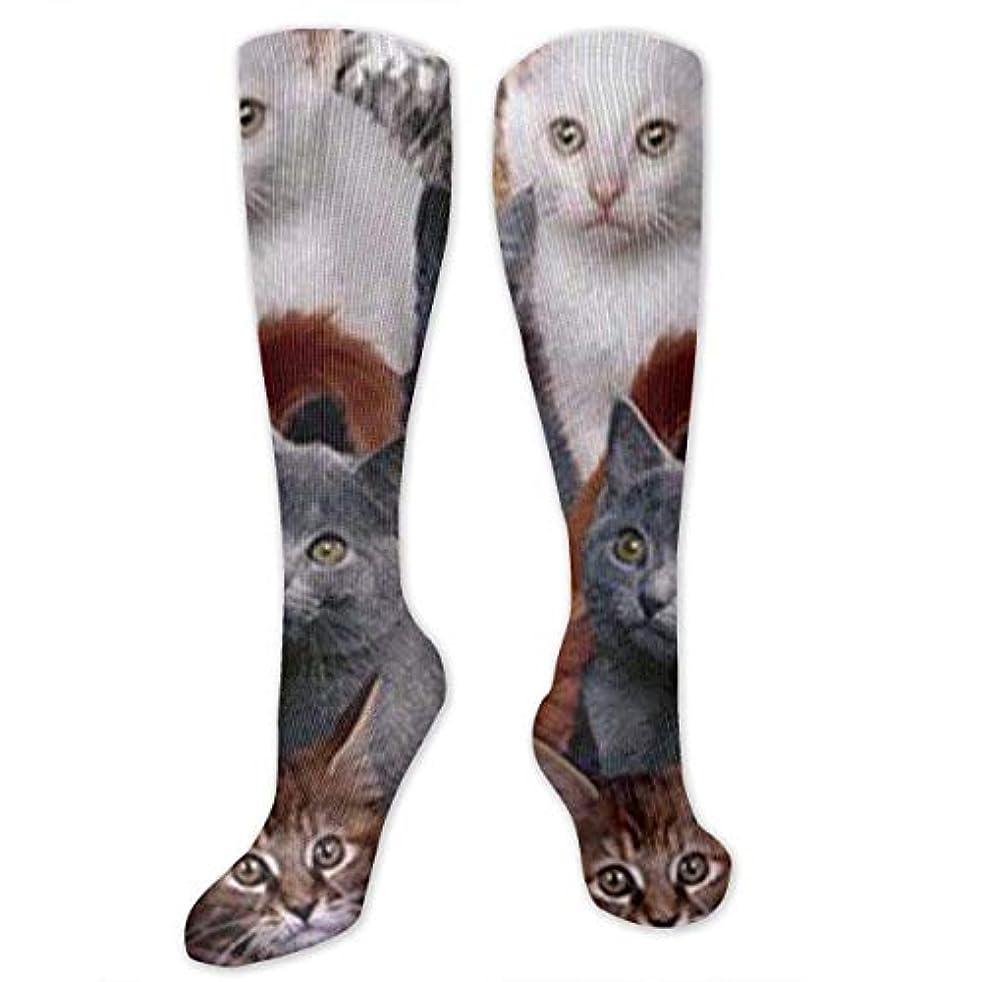 ソフトウェア悪魔旋律的靴下,ストッキング,野生のジョーカー,実際,秋の本質,冬必須,サマーウェア&RBXAA Cats Galore Socks Women's Winter Cotton Long Tube Socks Knee High...