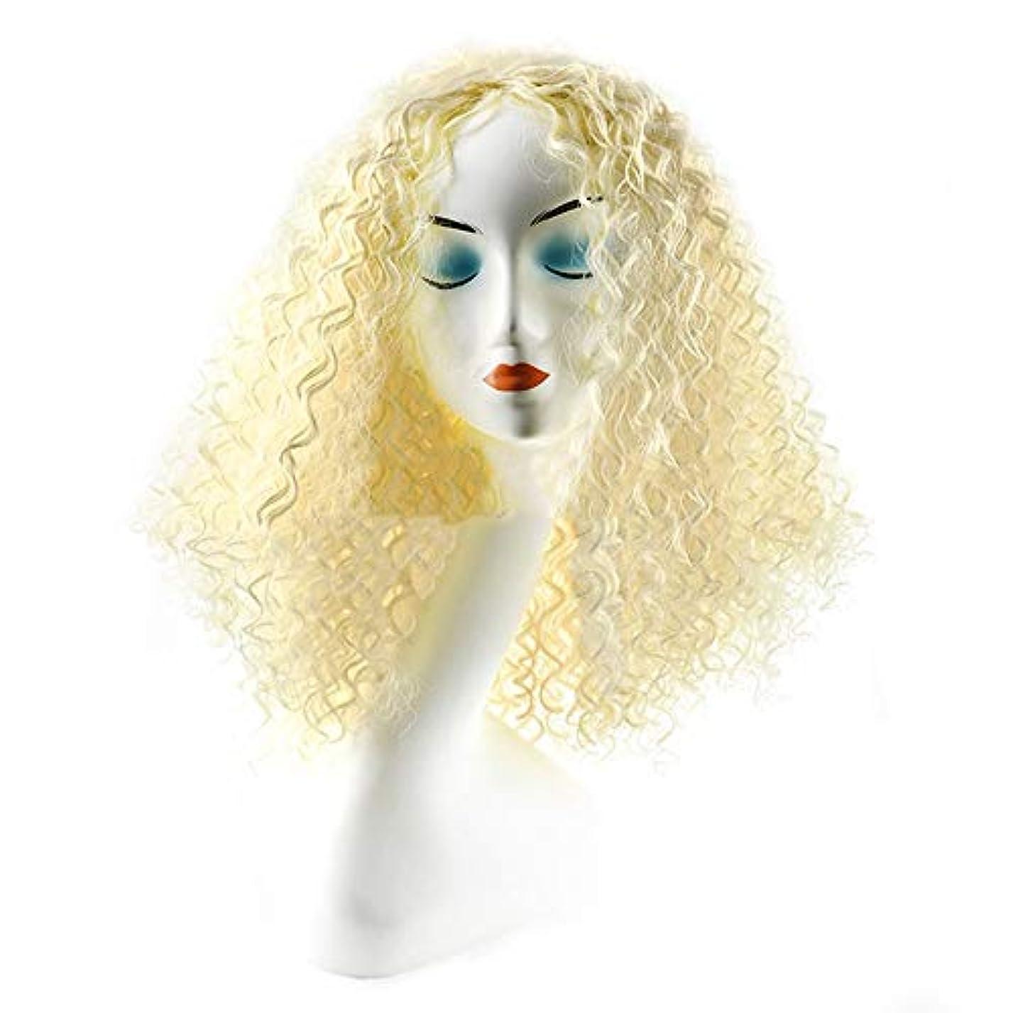 結晶失礼カジュアルWASAIO ファッションレディーブロンドショートカーリーヘアウィッグ用女性アクセサリースタイル交換繊維合成毎日コスプレドレス (色 : Blonde)