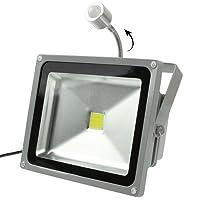 TSFFO 20Wの防水人間のセンサー白いLEDの投光ランプ、AC 85-265V、光束:1800lm - 2000lm、検出距離:3-8Mウォームホワイト (SKU : S-led-1622ww)