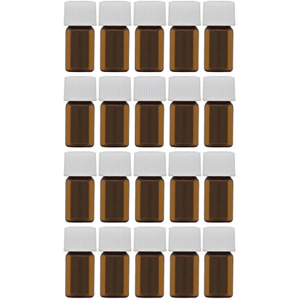シネウィ発音する共和党遮光ビン 1ml 20本セット
