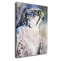 ブルームン アドラー 鳥 ラプター アートフレーム パネル 40×50 フレーム 壁飾り 壁アート 装飾 装飾画 背景絵画 アート ポスター 芸術 壁芸術 インテリア 枠なし おしゃれ 新築祝い 開店祝い プレゼント 絵 モダン 贈り物
