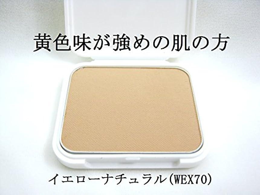メンタルパッケージ排気IR アイリベール化粧品 パウダリーファンデーション リフィル 13g (WEX70)