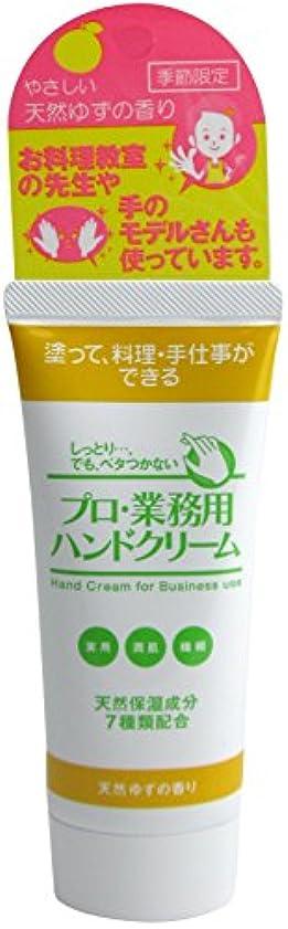 実験的文断片プロ業務用ハンドクリーム 天然ゆずの香り
