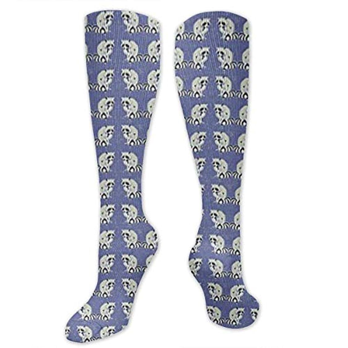 適度に現金崖靴下,ストッキング,野生のジョーカー,実際,秋の本質,冬必須,サマーウェア&RBXAA Blue Raccoons Socks Women's Winter Cotton Long Tube Socks Cotton Solid...