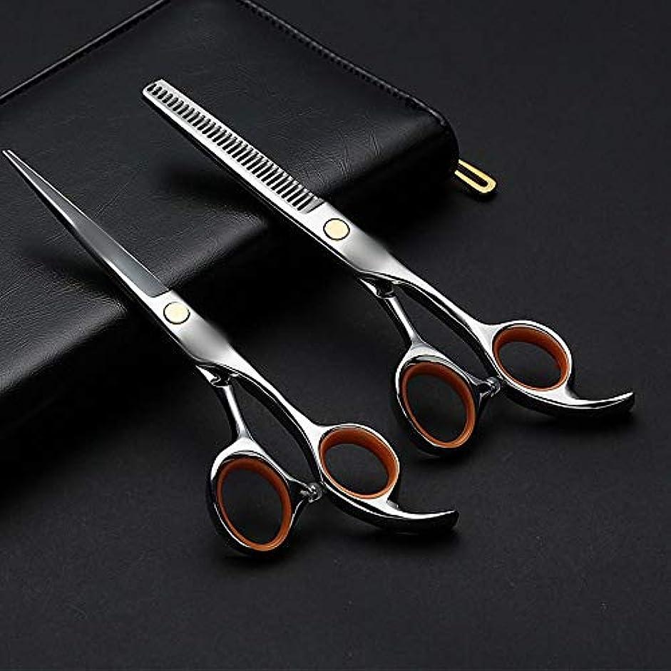 活性化するレクリエーション追加6.0インチの専門の理髪はさみ、平らなシザー+歯はさみ理髪セット モデリングツール (色 : Silver)