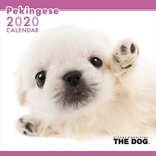 THE DOG カレンダー ペキニーズ 2020 カレンダー 犬 グッズ 動物 いぬ アニマル 壁掛け
