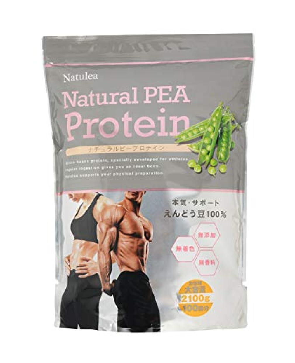 残り出くわすコース【大容量】Natural PEA Protein 2100g 無添加?無着色?無香料 ナチュラル プロテイン えんどう豆由来