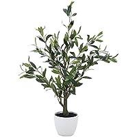 不二貿易 フェイクグリーン 観葉植物 オリーブ 高さ82cm 人工 52689