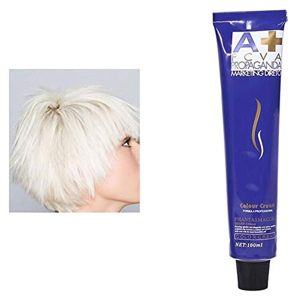 スキームレディ苦しみ染毛剤 FidgetFidget 100ミリリットルヘアダイクリーム染料泥ヘアカラーワックスヘアスタイルスタイリングdiyの髪の着色 白 100mL