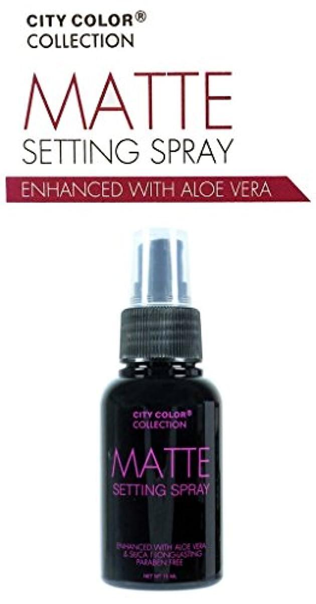 シャットコックシロクマCITY COLOR Matte Setting Spray (並行輸入品)