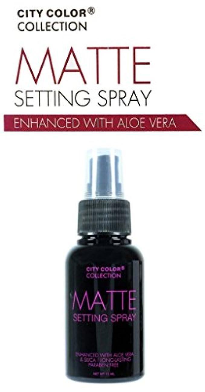優れた旋律的残高CITY COLOR Matte Setting Spray (並行輸入品)