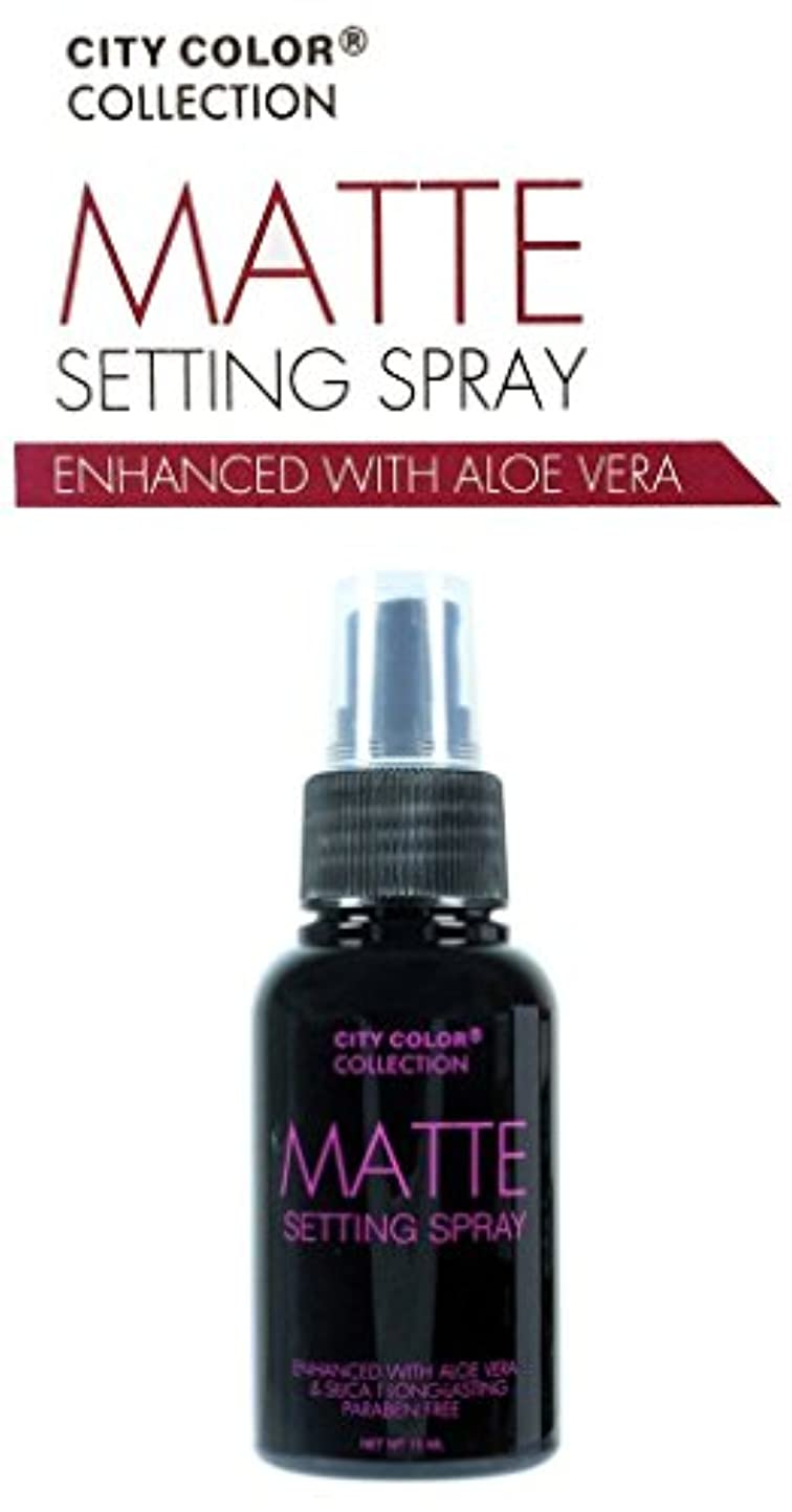 主人空洞気を散らすCITY COLOR Matte Setting Spray (並行輸入品)