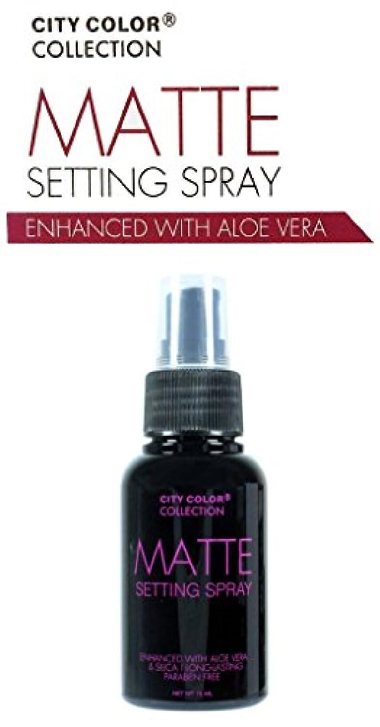 お嬢反対に粘土CITY COLOR Matte Setting Spray (並行輸入品)