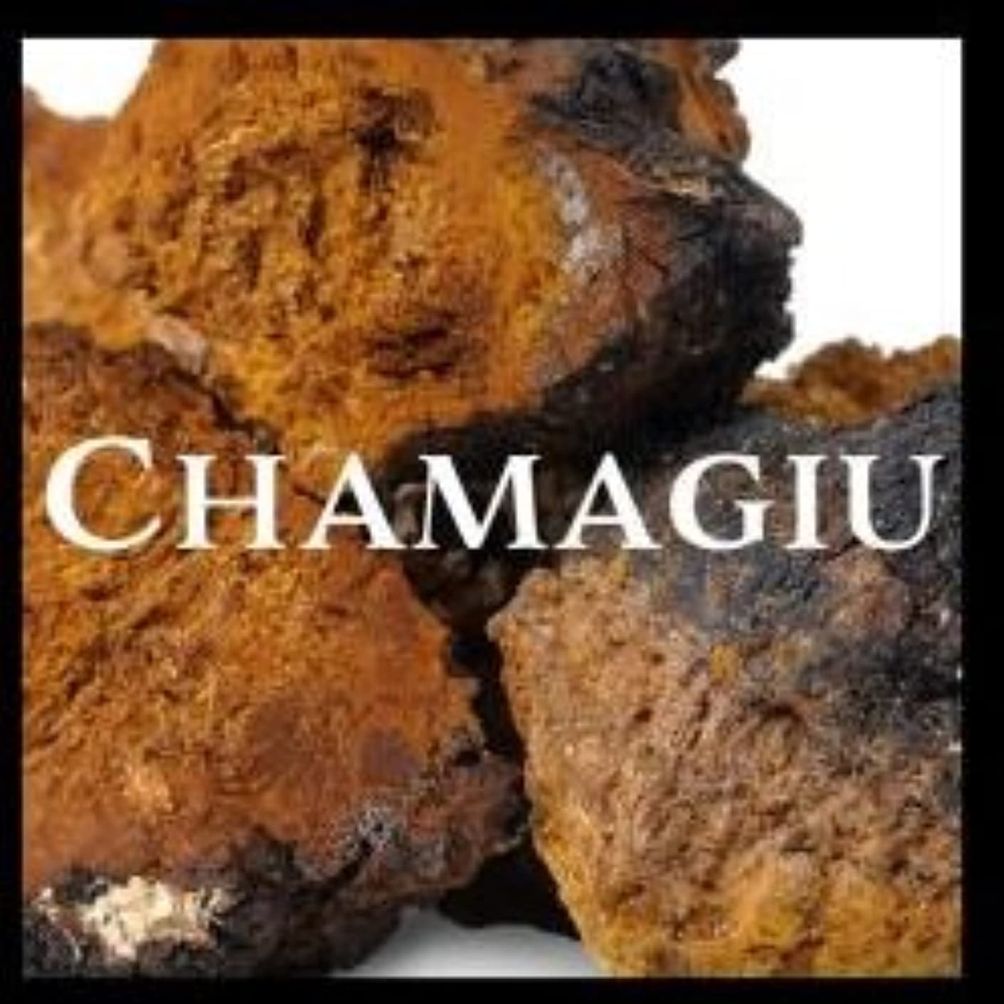 ゲージ失う幾分チャマージュ~Chamagiu~/ ダイエットサプリメント ボディケア