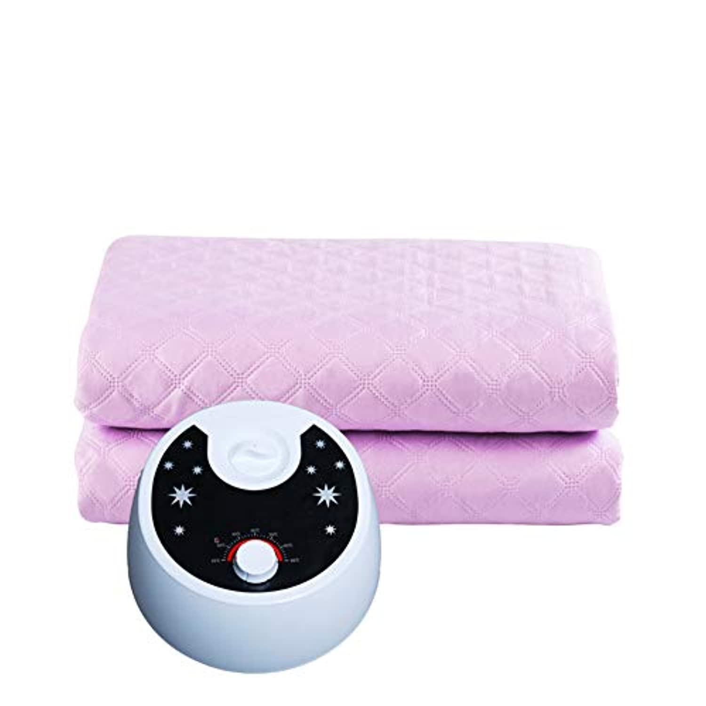 DWLINA 配管電気毛布シングルダブル水循環世帯の温度調整のタイミング洗える配管毛布,Purple,160*180Cm