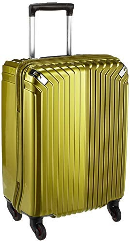 HIDEO WAKAMATSU スーツケース ジッパー インライト 53cm 85-7646