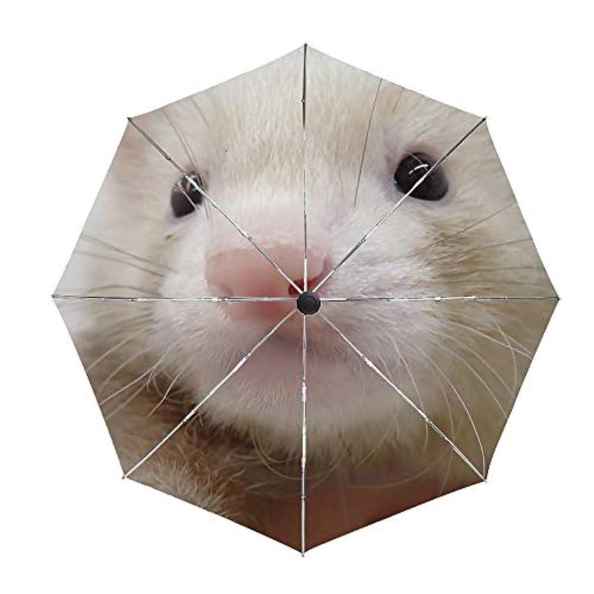 絡まる優遇ヘルメット日傘 折りたたみ傘 かわいいフェレット 晴雨兼用 UVカット率99.9% 耐風撥水 二重生地 紫外線遮蔽 レディース 日焼け対策