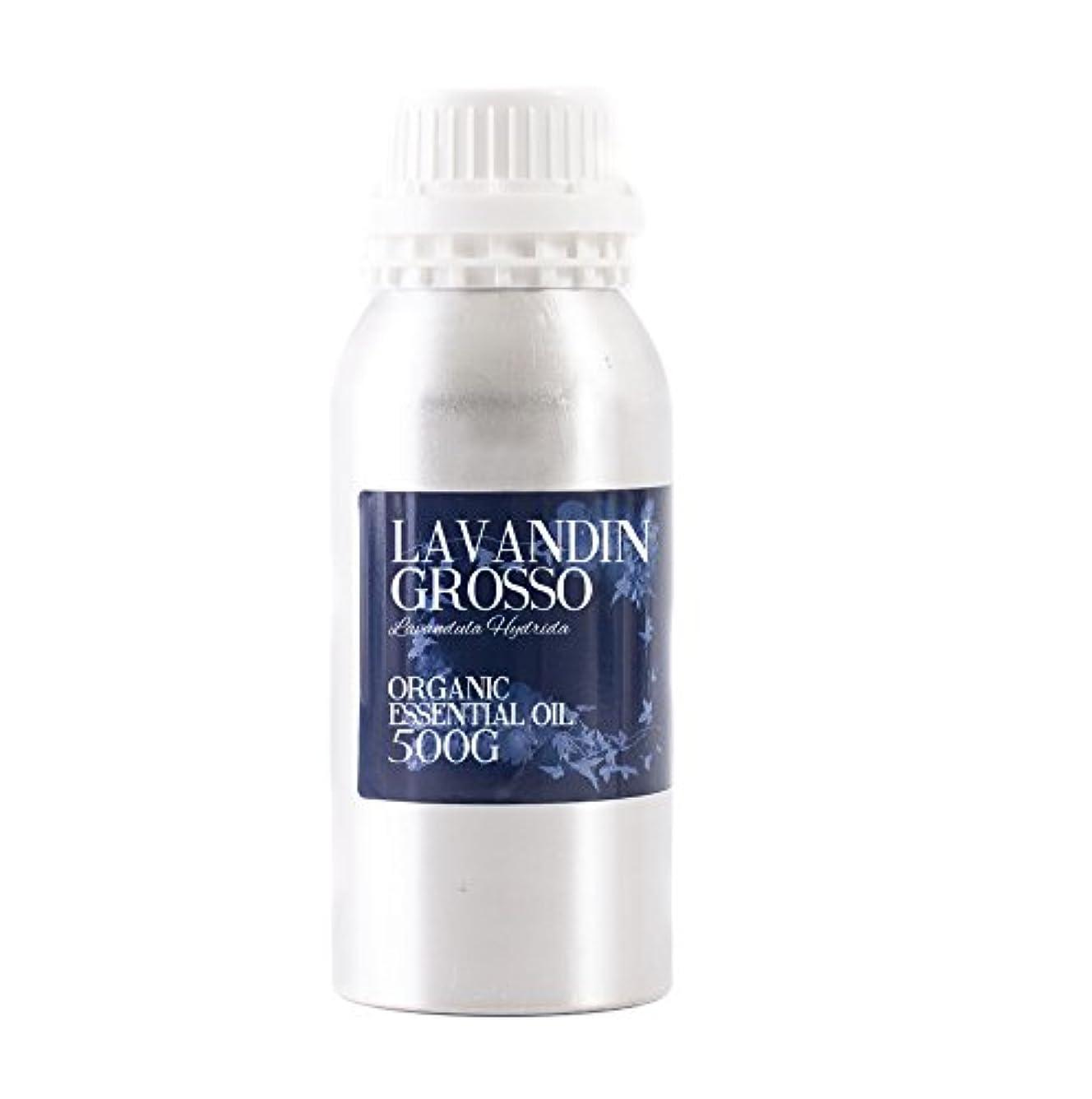 アブストラクトアジア自伝Mystic Moments | Lavandin Grosso Organic Essential Oil - 500g - 100% Pure