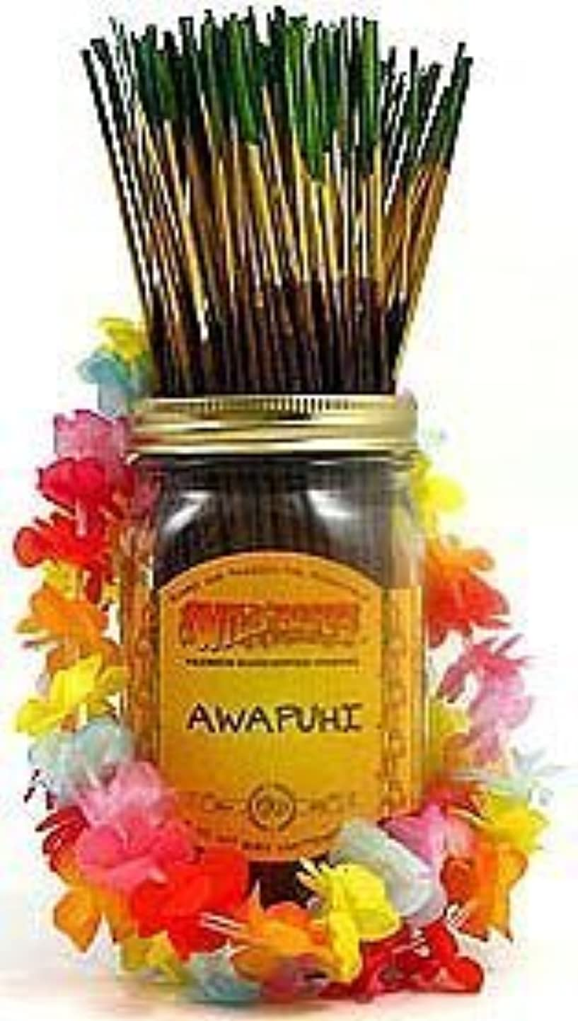 覗く一般的な社会科Awapuhi - 100 Wildberry Incense Sticks [並行輸入品]