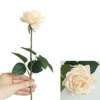 Cratone 人工ローズフェイクフラワーリアルタッチ植物保持花のデザインホーム保湿結婚式の装飾1ピース (しゃんぺんからー)