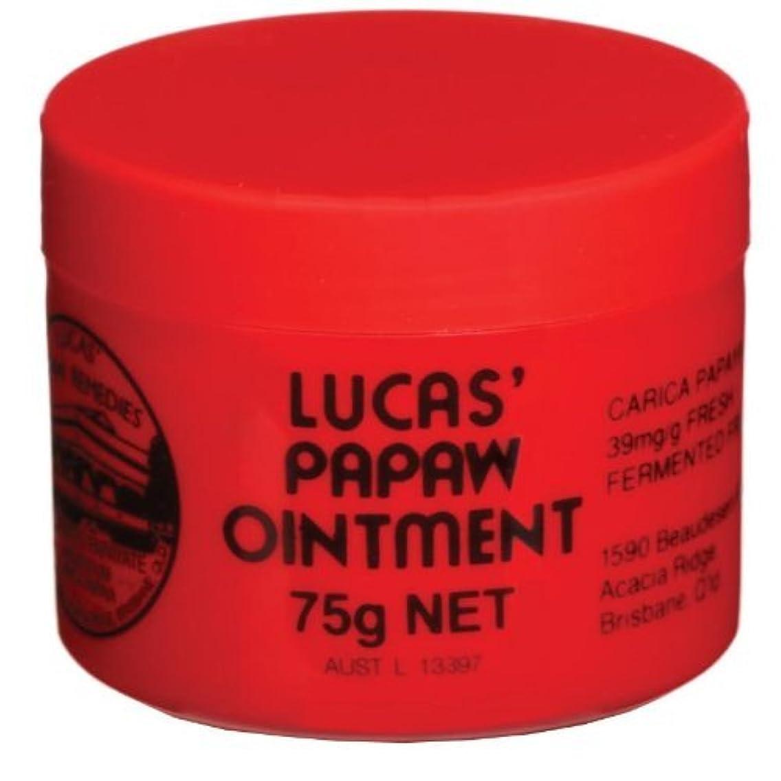 インタフェース炭素職業[Lucas' Papaw Ointment] ルーカスポーポークリーム 75g