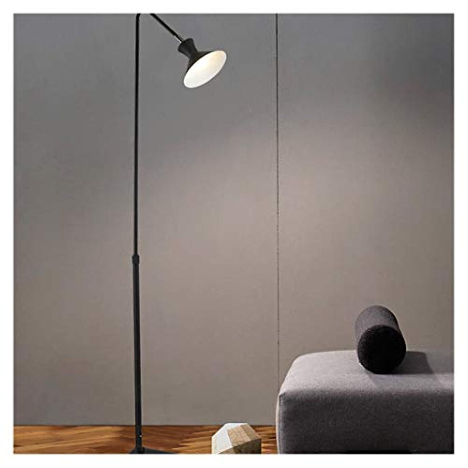面白い物足りない問い合わせるDerFel フロアランプ - LEDクリエイティブ寝室リビングルームスタンドランプスタディシンプルモダン人格ベッドサイドフロアランプ フロアスタンド?ランプ