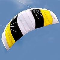 Lixada Dual Line Stunt Parafoil KiteアウトドアスポーツFunビーチFlying Kite Toy with 30 mライン