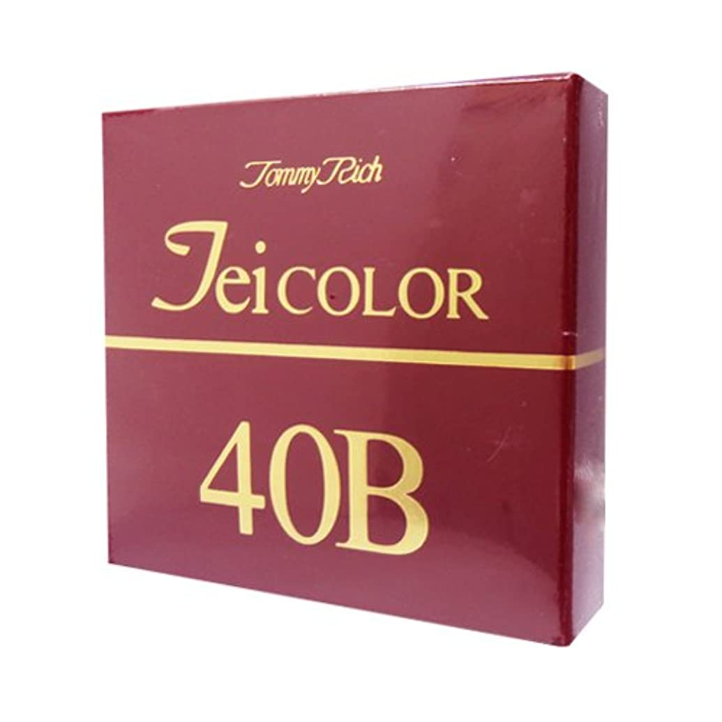 ブリッジ自治のどトミーリッチ TEIカラー 40B(色白肌用)