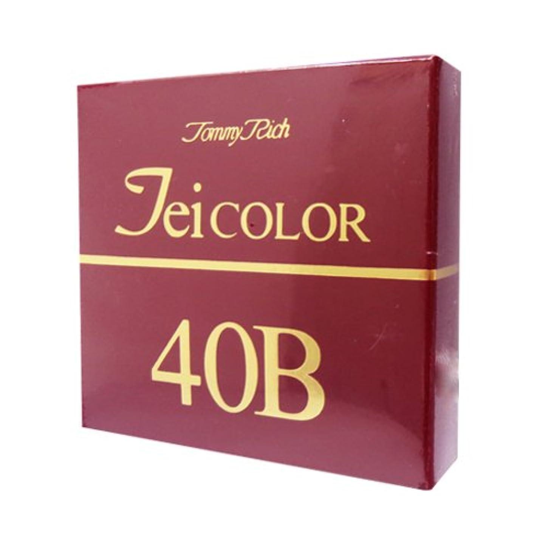 ベッドを作る四半期特性トミーリッチ TEIカラー 40B(色白肌用)