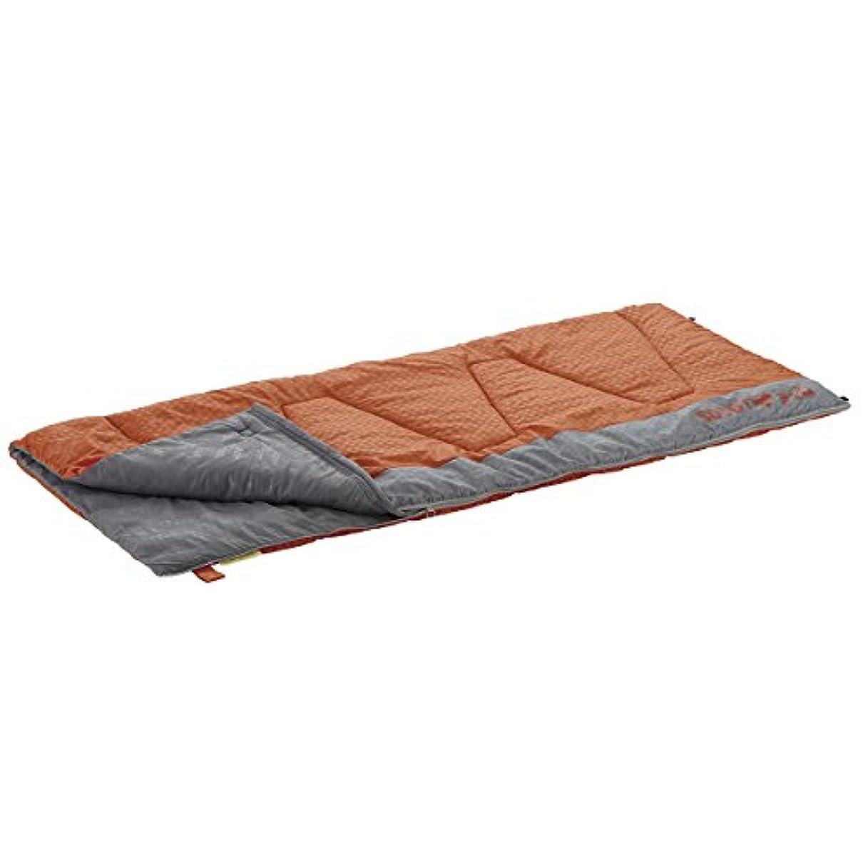 恐ろしい失礼な十代の若者たちロゴス 寝袋 丸洗い寝袋ウォーマー?0 (抗菌?防臭)[最低使用温度0度] 72600660