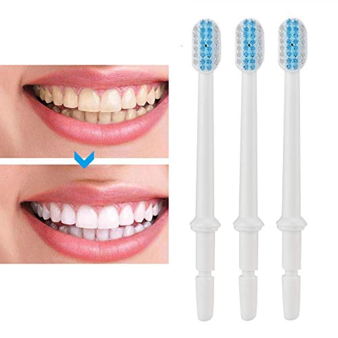 バーベキューのぞき穴ボール3本/セット歯ブラシノズルフロス歯磨き器フロスノズル交換部品