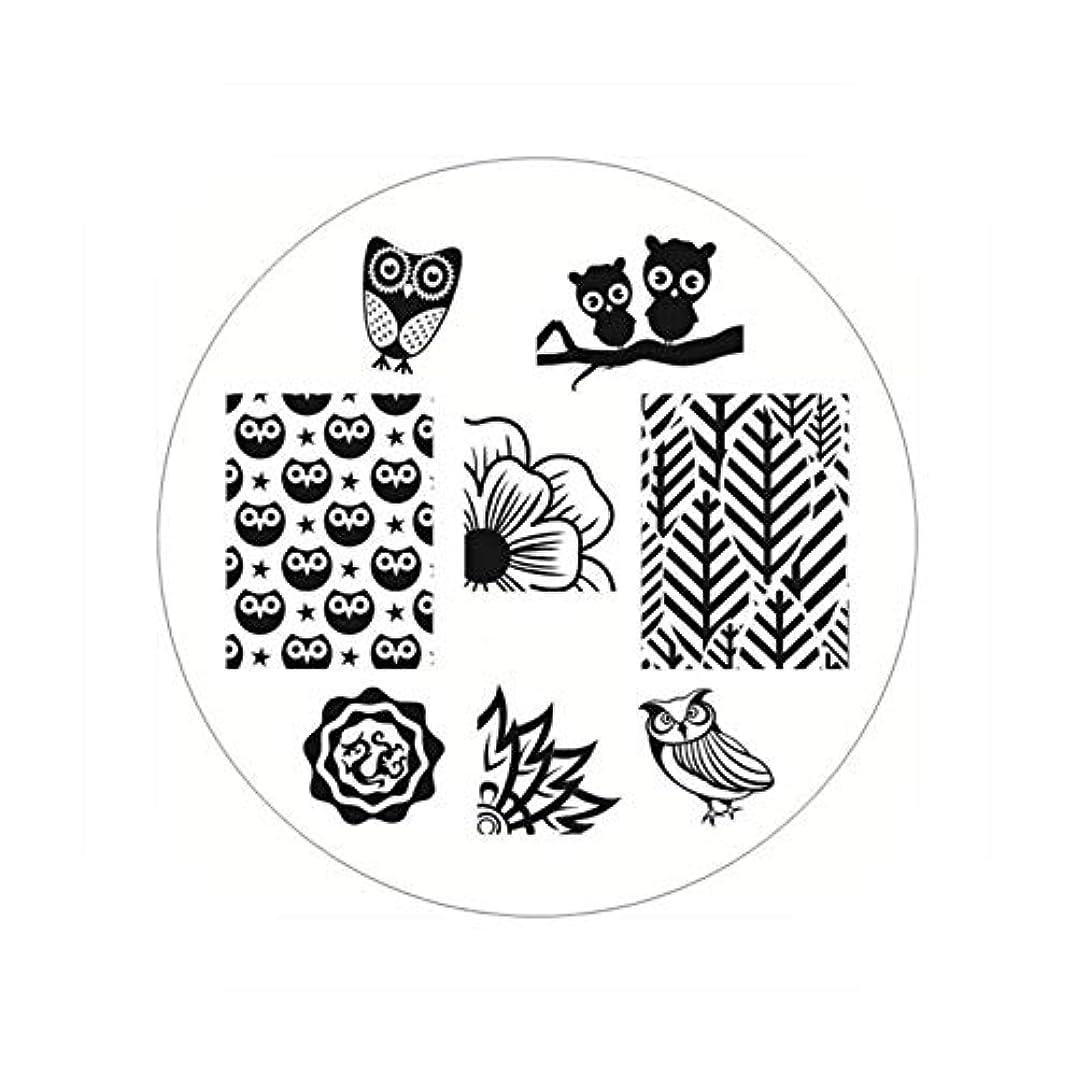 自治ジャーナルリフト生まれたかわいい長方形のネイルスタンピングプレートラインネイルアートイメージスタンプテンプレートステンシル芸術的な夏のテーマ,BP54
