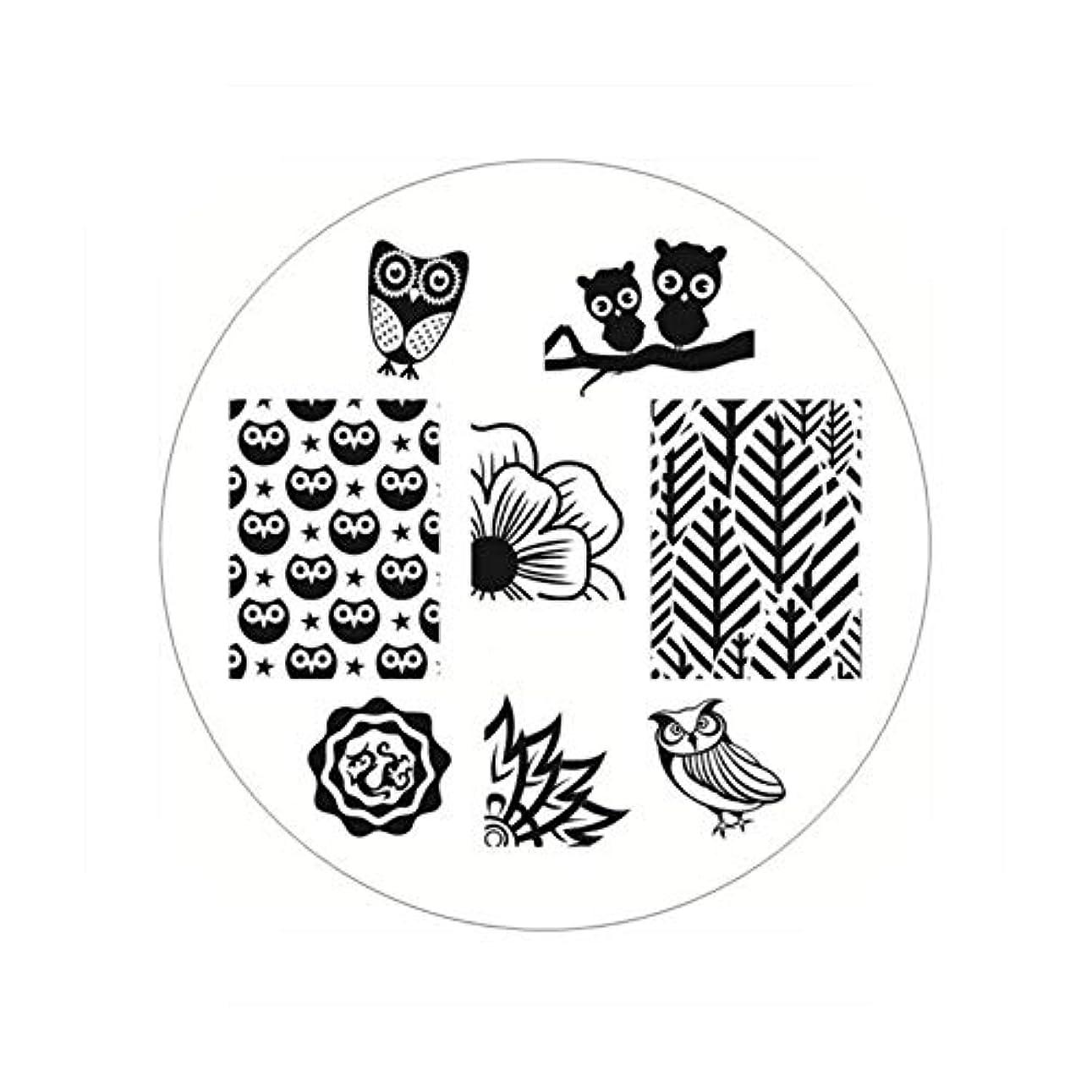 練る楽な時々時々生まれたかわいい長方形のネイルスタンピングプレートラインネイルアートイメージスタンプテンプレートステンシル芸術的な夏のテーマ,BP54