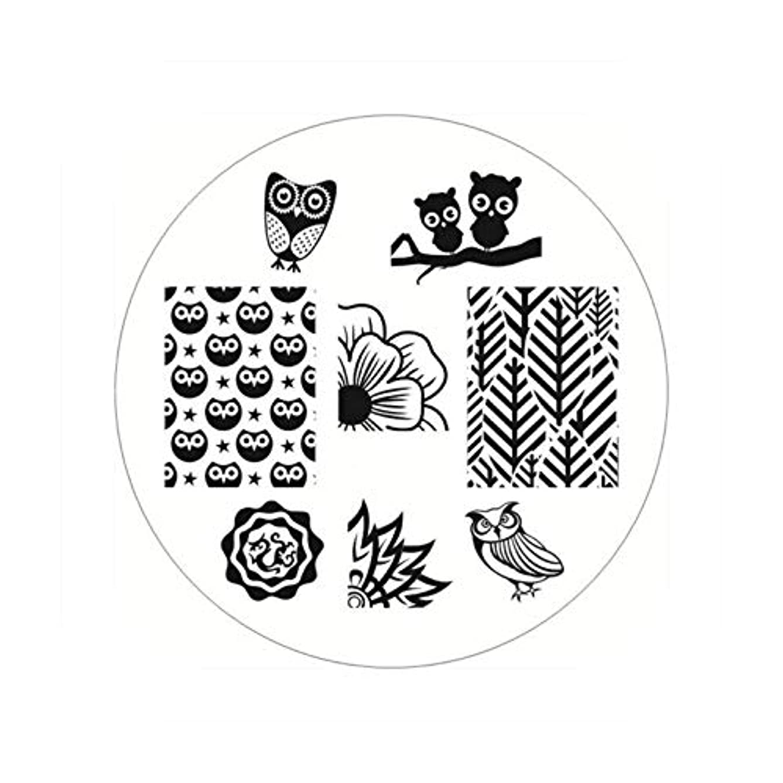 コミットメント更新ロバ生まれたかわいい長方形のネイルスタンピングプレートラインネイルアートイメージスタンプテンプレートステンシル芸術的な夏のテーマ,BP54