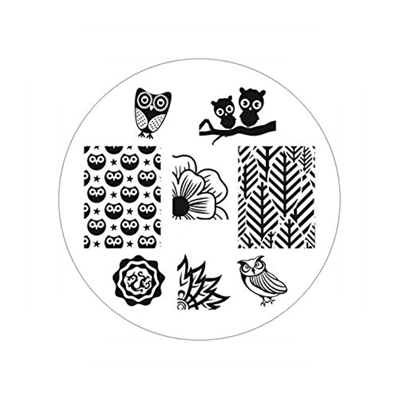 翻訳するリース橋生まれたかわいい長方形のネイルスタンピングプレートラインネイルアートイメージスタンプテンプレートステンシル芸術的な夏のテーマ,BP54